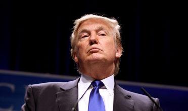 Next four Trump years