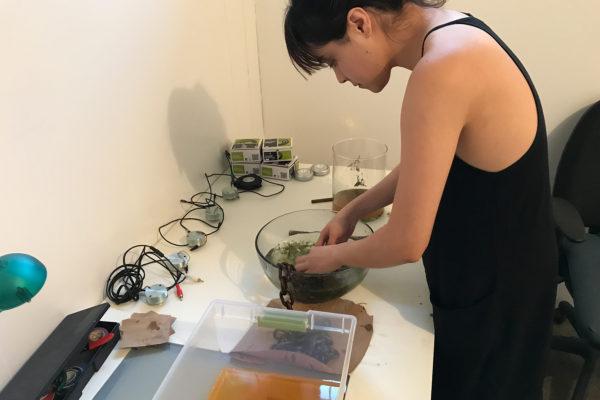 Isabella Cruz-Chong